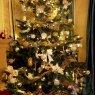 Árbol de Navidad de iwona (England)