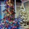 Árbol de Navidad de Elisabeth  (Syrgenstein Bayern, Germany)