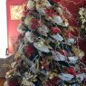Garry Pope's Christmas tree from Campbellton, NL, Canada