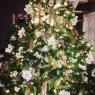 Sapin de Noël de Miriam Sedlacek (Chicago, Illinois, USA)