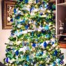Donnie Mays 's Christmas tree from Evansville, IN, USA
