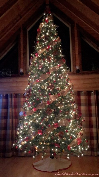 Dupont Cabin Christmas Tree (Newfoundland, Whitbourne )