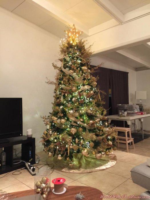 Golden Christmas  (Fort Lauderdale, Fl)