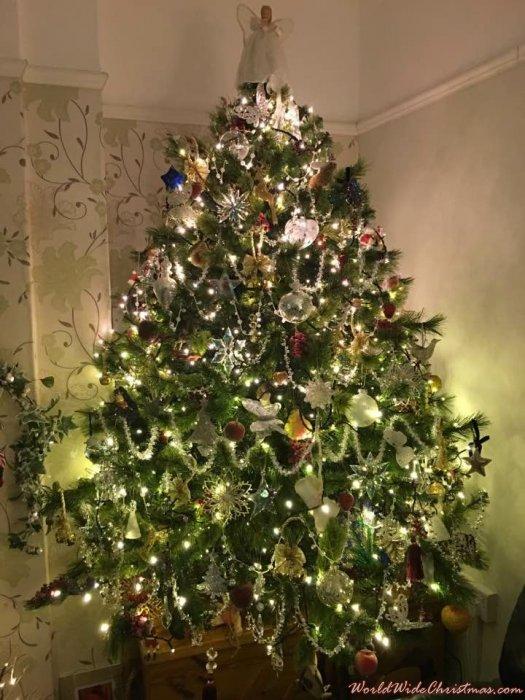 Fern Barlow S Christmas Tree From Hertfordshire United Kingdom