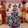 PAMELA GRANADOS's Christmas tree from CDMX, M?XICO