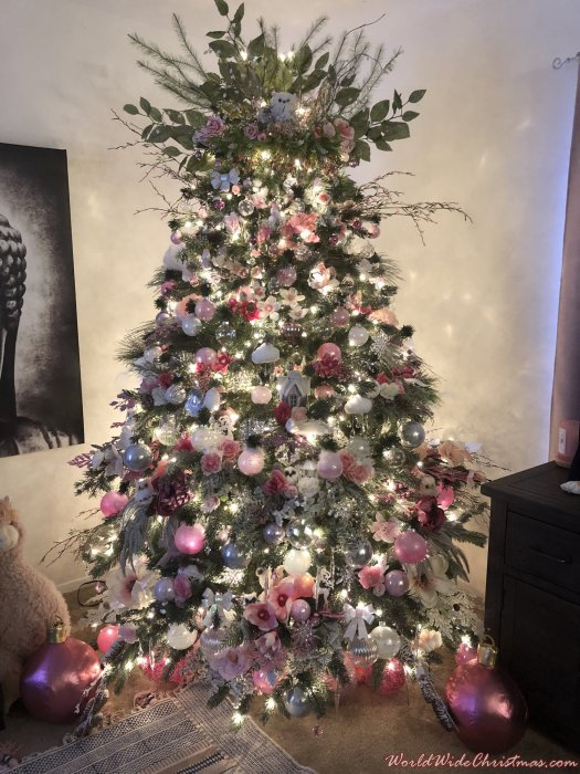 MD Pink English Garden (DFW, Texas)