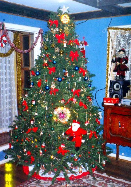 Cynthia Duarte's Christmas tree from Santiago, Chile