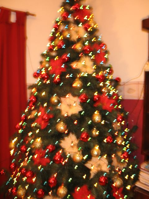 Mabel S Christmas Tree From Buenos Aires Argentina