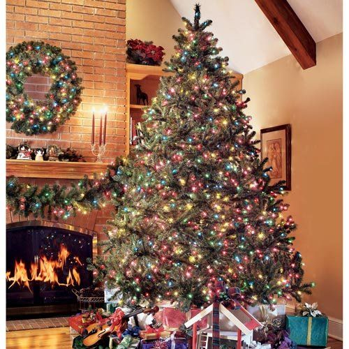 tree-xvEH9BWL Traditional Spanish Christmas Gifts