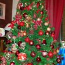 Giada & Linda's Christmas tree from Piemonte, Italy