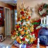 hugh somers's Christmas tree from new brunswick canada