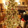 LakeXmas's Christmas tree from Celina, OH, USA