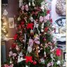Rose's Christmas tree from Frameries, belgique