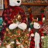 Have A Bear-y Merry Christmas's Christmas tree from Cedar Mountain, NC, USA