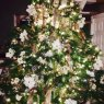 Miriam Sedlacek's Christmas tree from Chicago, Illinois, USA