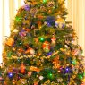 Tim Sridharan's Christmas tree from San Jose, California, USA