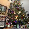 Judy Hall Collins's Christmas tree from Hoover, Alabama