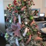 Moe Mortezai's Christmas tree from Boca raton