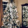 Minnie Kay Fuller Blue Christmas's Christmas tree from Sarepta, Louisiana, USA