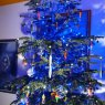 WIEST Denis's Christmas tree from Sarralbe FRANCE