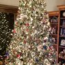 Becky Cooper's Christmas tree from North Carolina USA