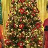 Bindu Antony's Christmas tree from Dubai